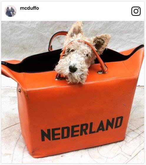 mcduffo-instagram